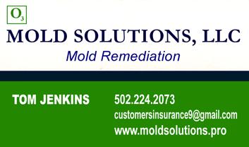 Tom Jenkins, Mold Solutions