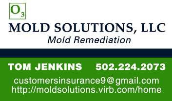 Mold Solutions - Tom Jenkins